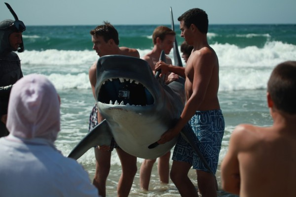 Rogue sharks shark on beach 600x400